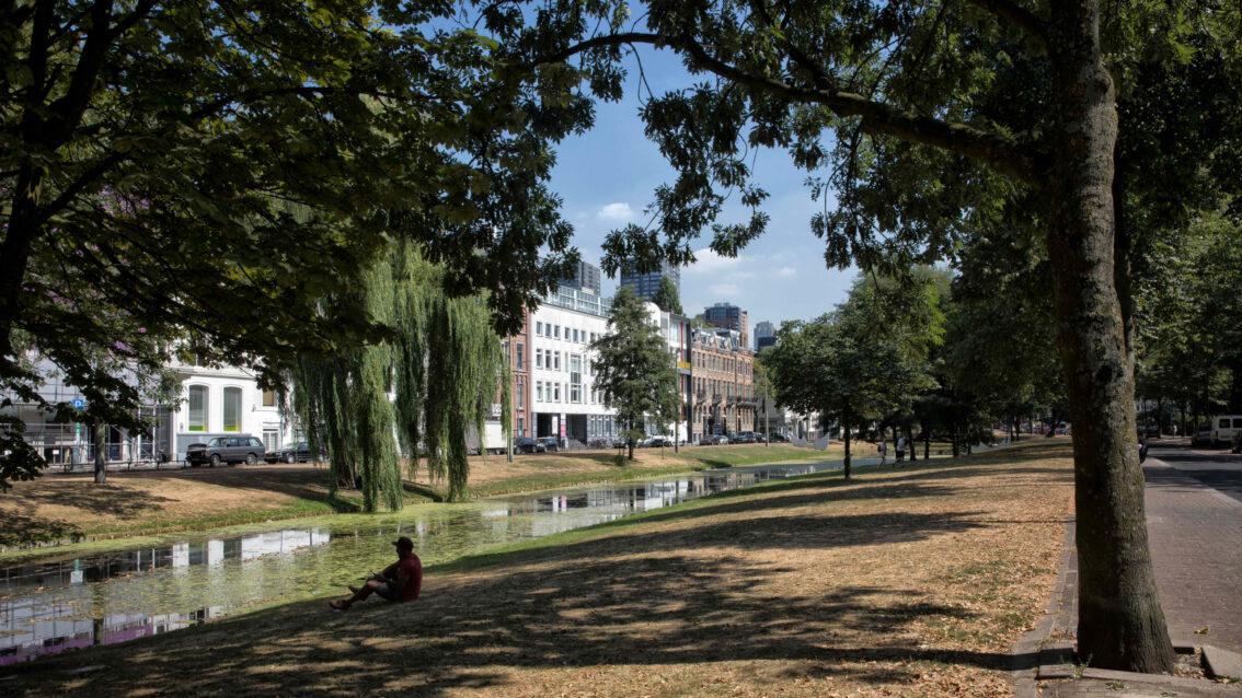 Rotterdam doet mee aan wereldwijd groen initiatief!
